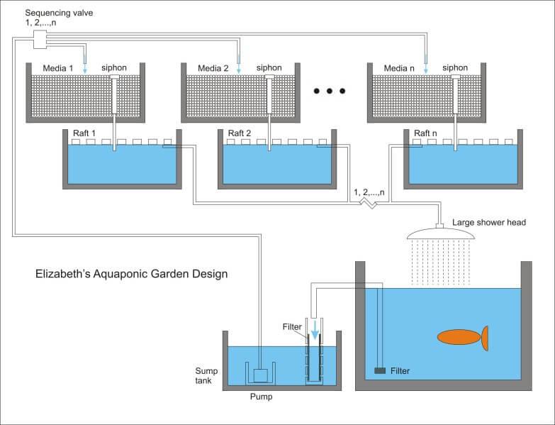 aquaponics garden setup