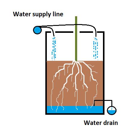 Cross section of a dutch bucket in aquaponics
