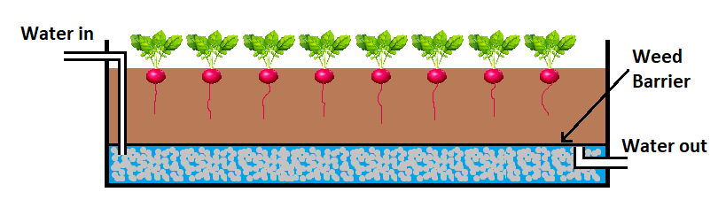 wicking bed in an aquaponics system