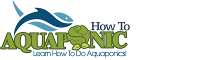 How To Aquaponic