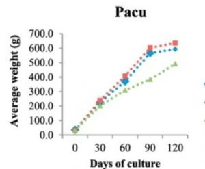 pacu growth rate chart