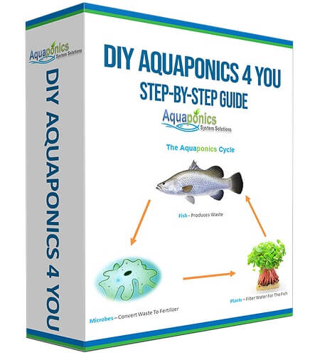 The Best Plants for Aquaponics Systems | How To Aquaponic