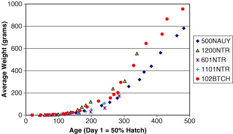 arctic char growth rate in recirculating aquaculture