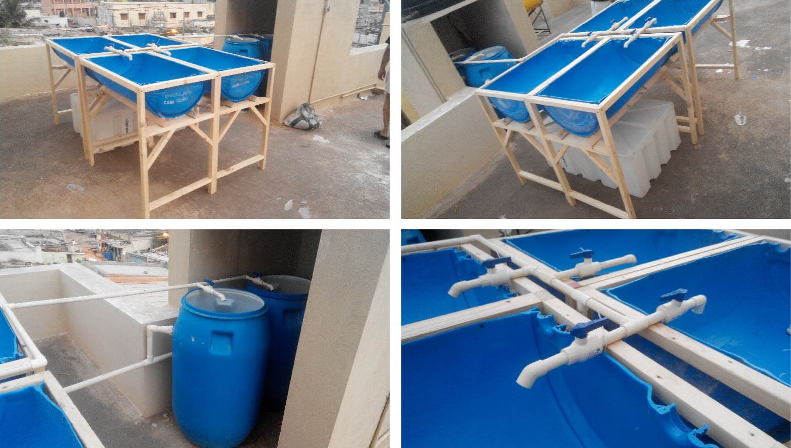 barrel aquaponics split