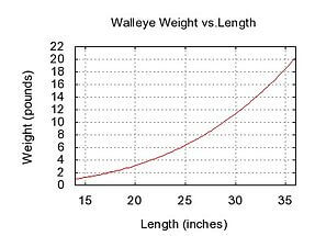 walleye weight and length chart