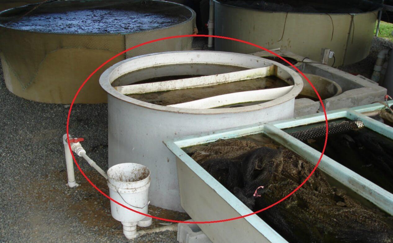 UVI aquaponics clarifier
